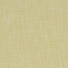 Citrus Solids Drapery and Upholstery Fabric by Clarke & Clarke