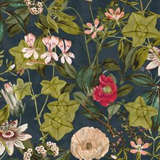 Midnight/Spice Drapery and Upholstery Fabric by Clarke & Clarke