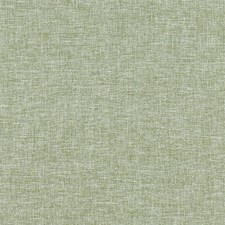 Sage Drapery and Upholstery Fabric by Clarke & Clarke