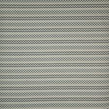 Lemur Drapery and Upholstery Fabric by Maxwell