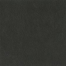 Onyx Drapery and Upholstery Fabric by Silver State