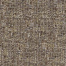 Caviar Drapery and Upholstery Fabric by RM Coco