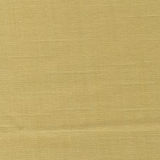 Sprout Drapery and Upholstery Fabric by RM Coco