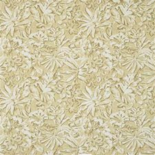 Beige Outdoor Drapery and Upholstery Fabric by Groundworks