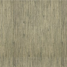 Pyrite Outdoor Drapery and Upholstery Fabric by Groundworks