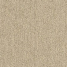 Ashe Drapery and Upholstery Fabric by RM Coco