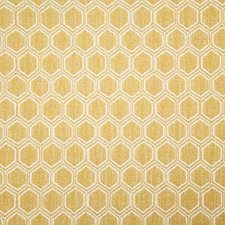 Soleil Contemporary Drapery and Upholstery Fabric by Pindler