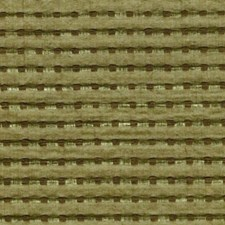 Greenwood Drapery and Upholstery Fabric by RM Coco