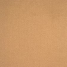Maple Drapery and Upholstery Fabric by RM Coco
