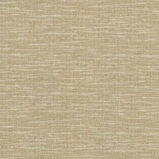 Sandalwood Drapery and Upholstery Fabric by Kasmir