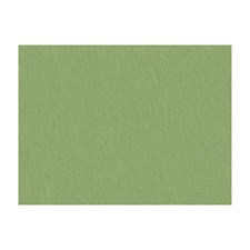 Tarragon Solids Drapery and Upholstery Fabric by Brunschwig & Fils