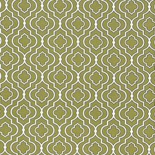 Sprout Drapery and Upholstery Fabric by Kasmir