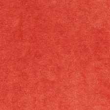 Persimmon Drapery and Upholstery Fabric by Scalamandre