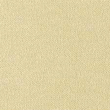 Daffodil Drapery and Upholstery Fabric by Scalamandre