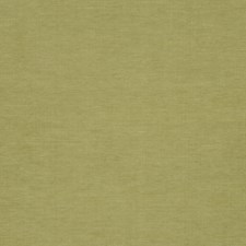 Grass Drapery and Upholstery Fabric by RM Coco