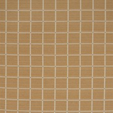 Ochre Drapery and Upholstery Fabric by Silver State