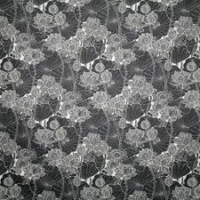 Domino Contemporary Drapery and Upholstery Fabric by Pindler