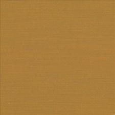Turmeric Drapery and Upholstery Fabric by Kasmir