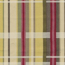 Berry Limeade Drapery and Upholstery Fabric by Kasmir