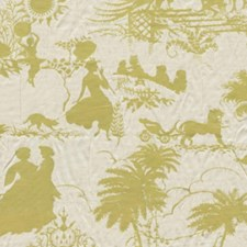Endive Drapery and Upholstery Fabric by RM Coco