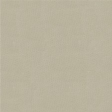 Light Grey Solids Drapery and Upholstery Fabric by Kravet