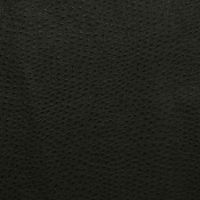 Ebony Drapery and Upholstery Fabric by Pindler