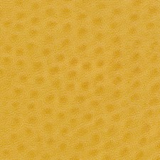 Lemon Drapery and Upholstery Fabric by Pindler