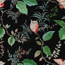 Black Animal Drapery and Upholstery Fabric by Kravet