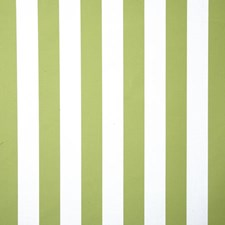 Kiwi Stripe Drapery and Upholstery Fabric by Pindler
