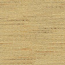 Camel Solids Drapery and Upholstery Fabric by Baker Lifestyle