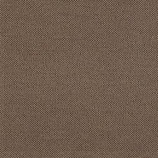 Otter Drapery and Upholstery Fabric by RM Coco
