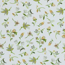 Melon Drapery and Upholstery Fabric by RM Coco
