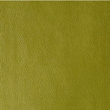 Wasabi Metallic Drapery and Upholstery Fabric by Kravet