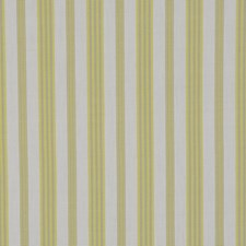 Lime Drapery and Upholstery Fabric by RM Coco