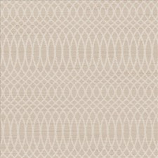 Cotton Drapery and Upholstery Fabric by Kasmir