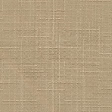 Tussah Drapery and Upholstery Fabric by Kasmir