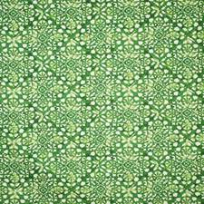 Grass Contemporary Drapery and Upholstery Fabric by Pindler