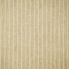 Golden Stripe Drapery and Upholstery Fabric by Pindler