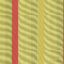 Piazza Green Drapery and Upholstery Fabric by RM Coco