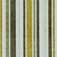 Ivy Stripe Drapery and Upholstery Fabric by Duralee