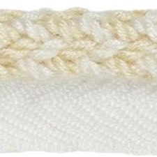 Cord With Lip Sea Salt Trim by Kravet
