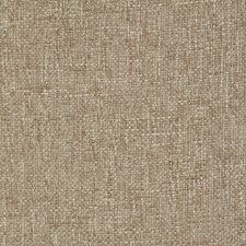 Sesame Solid Drapery and Upholstery Fabric by Pindler