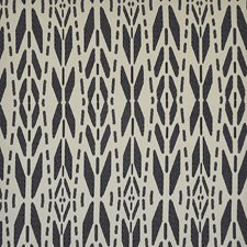 Onyx Drapery and Upholstery Fabric by Maxwell