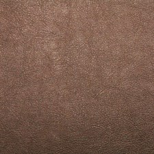 Outback Drapery and Upholstery Fabric by Silver State