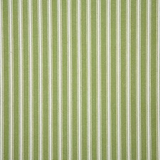 Palm Stripe Drapery and Upholstery Fabric by Pindler