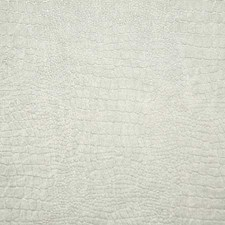 Tusk Solid Drapery and Upholstery Fabric by Pindler