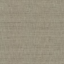 Grey Drapery and Upholstery Fabric by Kasmir