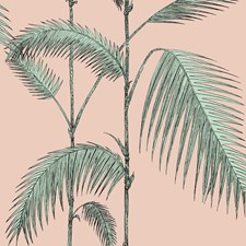 Plaster Pink/Mint Sidewall Wallcovering by Cole & Son Wallpaper