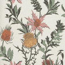 A Pink/Orange/Parch Print Wallcovering by Cole & Son Wallpaper