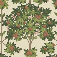 Orange/Spring Green/Parch Botanical Wallcovering by Cole & Son Wallpaper